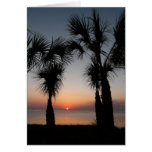 Sunset with Palms, 116 Greeting Card