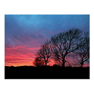 Sunset with rode sky postcard