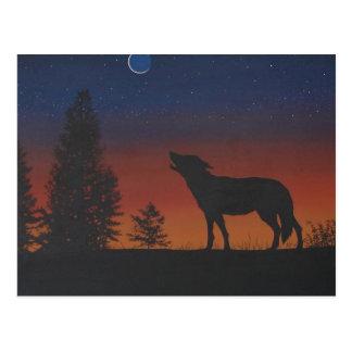 Sunset Wolf Postcard