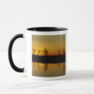 Sunset, Yellow Water Billabong 2 Mug