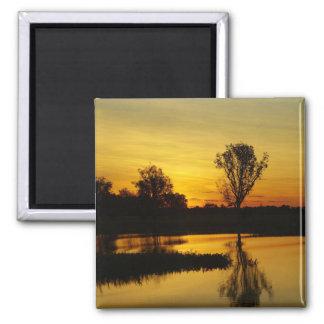 Sunset, Yellow Water Billabong 3 Magnet