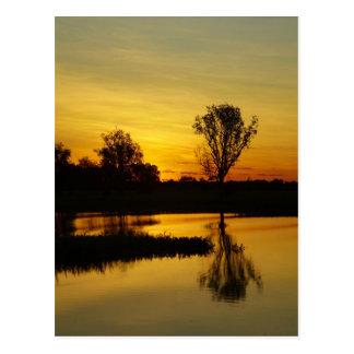 Sunset, Yellow Water Billabong 3 Postcard