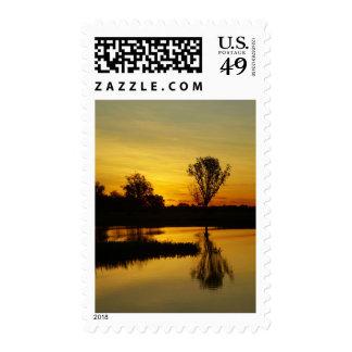 Sunset, Yellow Water Billabong 3 Stamp