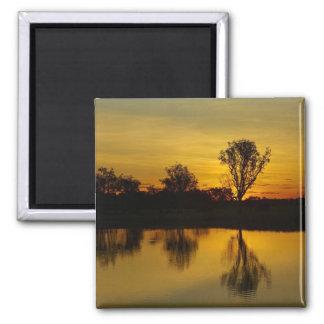 Sunset, Yellow Water Billabong Magnet