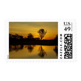 Sunset, Yellow Water Billabong Postage Stamp