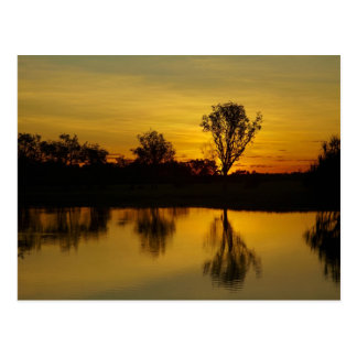 Sunset, Yellow Water Billabong Postcard