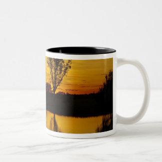 Sunset, Yellow Water Billabong Two-Tone Coffee Mug