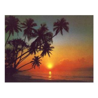 Sunsetisland Postales