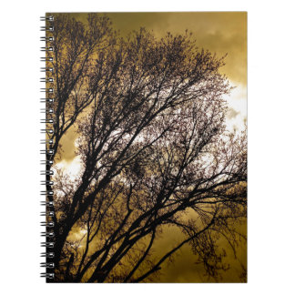 Sunsets and Silhouettes Notebook