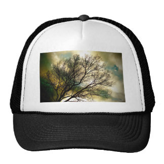 Sunsets and Silhouettes Trucker Hat