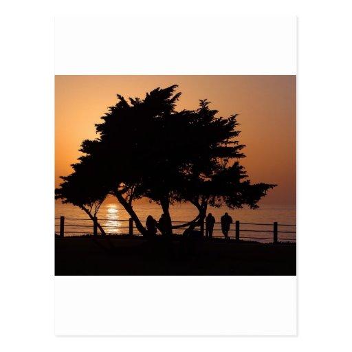 Sunsets La Jolla Postcard