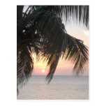 Sunsetting Doctor's Cave, Montego Bay, Jamaica Postcards