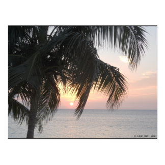 Sunsetting Doctor's Cave, Montego Bay, Jamaica Postcard