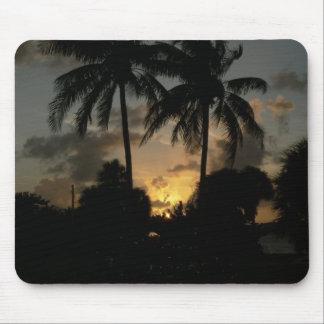 Sunsettling adentro detrás de las palmas tapete de raton