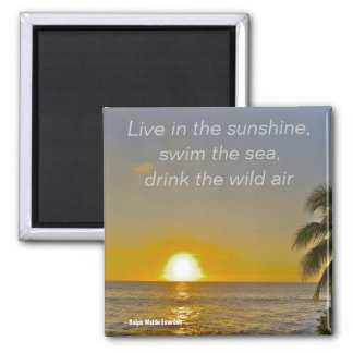 Sunshine and Sea Life Advice 2 Inch Square Magnet