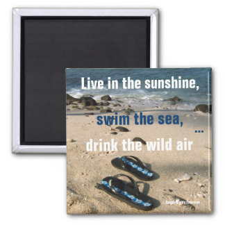 Sunshine and Sea Lifetime Goals Magnet