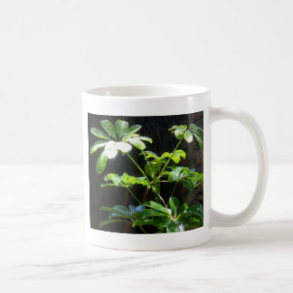 Sunshine and Showers Coffee Mug