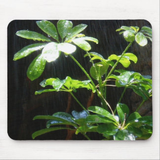 Sunshine and Showers Mouse Pad