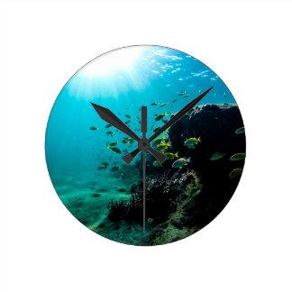 Sunshine and Tropical Fish Round Clock