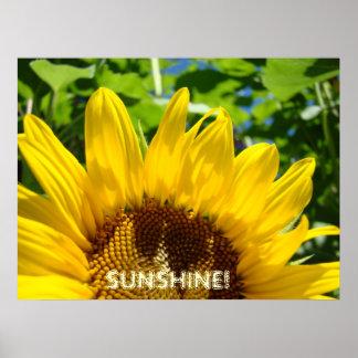 SUNSHINE! art prints Sunflower floral artwork Poster