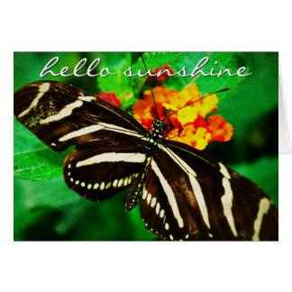 """Sunshine"" black butterfly photo blank inside card"