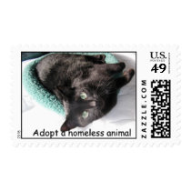 Sunshine Buster, Adopt a homeless animal Postage