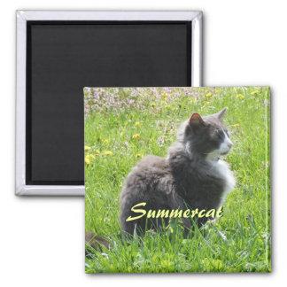 Sunshine Cat Magnet