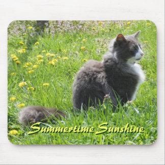 Sunshine Cat Mousepad
