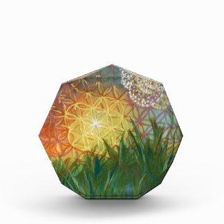 Sunshine Dandelion Sacred Geometry Landscape Award
