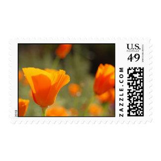 Sunshine Flowers Stamp