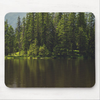 Sunshine Forest and a Lake Mouse Pad