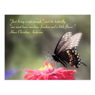 """Sunshine, Freedom, Flower"" Butterfly Quote Postcard"