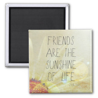 Sunshine & Friendship 2 Inch Square Magnet
