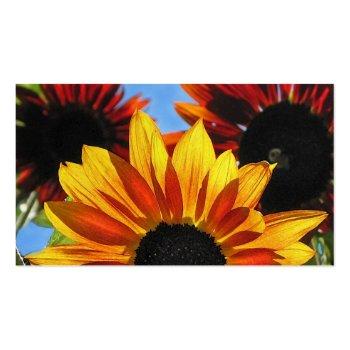 Sunshine Landscaping Business Card