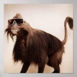 sunshine monkey posters