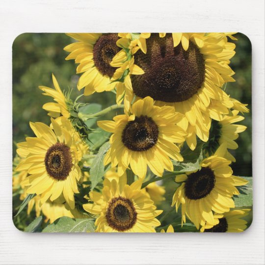 Sunshine on Stalks Mouse Pad