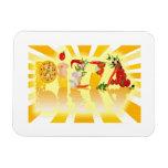 Sunshine Pizza Rectangle Magnets