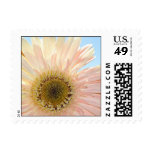 Sunshine Postage Stamps