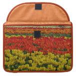 Sunshine Rainbow Tulips Sleeve For MacBooks