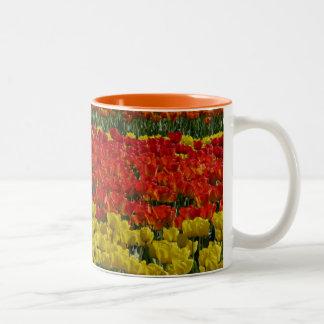 Sunshine Rainbow Tulips Two-Tone Coffee Mug