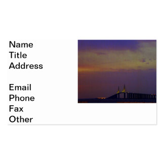Sunshine Skyway Bridge Double-Sided Standard Business Cards (Pack Of 100)