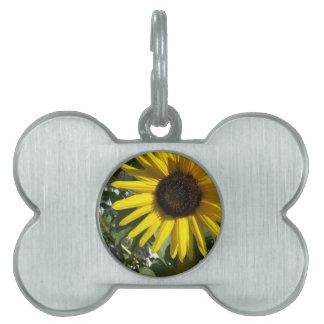 Sunshine Sunflower Pet ID Tag
