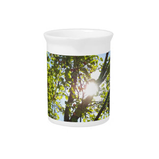 Sunshine Through Green Leaf Tree Drink Pitcher