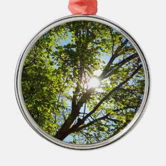 Sunshine Through Green Leaf Tree Round Metal Christmas Ornament