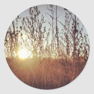 Sunshine Through the Prairie Grasses Classic Round Sticker
