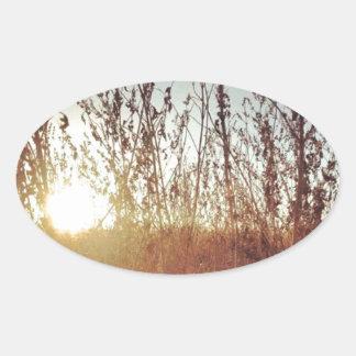 Sunshine Through the Prairie Grasses Oval Sticker