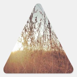 Sunshine Through the Prairie Grasses Triangle Sticker