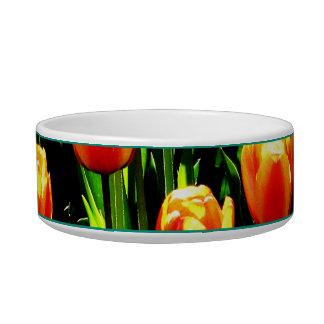 Sunshine Tulips Bowl