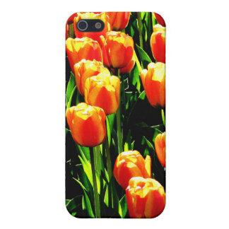 Sunshine Tulips iPhone 5 Case