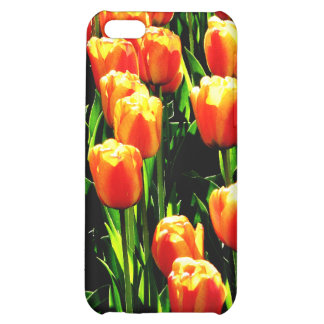 Sunshine Tulips Cover For iPhone 5C